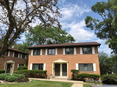 Glen Ellyn Condo/Townhouse For Sale: 300 Duane Street #10