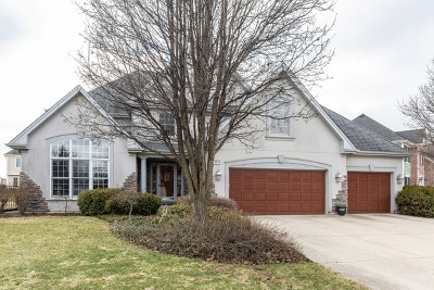 Geneva Single Family Home For Sale: 725 Fox Run Drive
