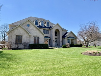 Naperville Single Family Home For Sale: 10538 Royal Porthcawl Drive
