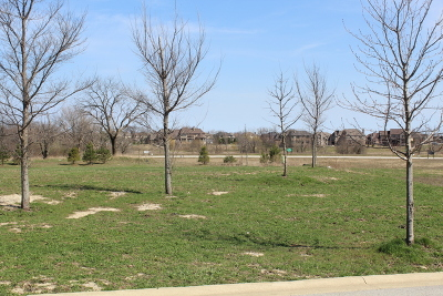 Frankfort Residential Lots & Land For Sale: 22837 Munich Court