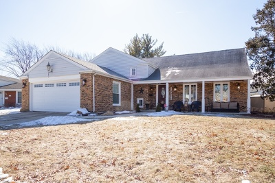 Arlington Heights Single Family Home For Sale: 1707 South Chesterfield Drive
