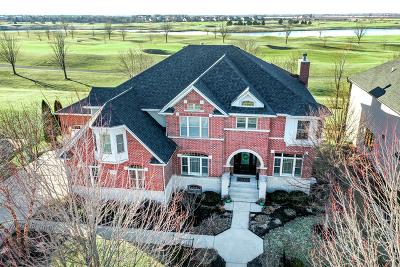 Bolingbrook Single Family Home Price Change: 1229 Bush Boulevard