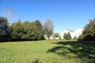 Joliet Residential Lots & Land For Sale: 1420 Essington Road