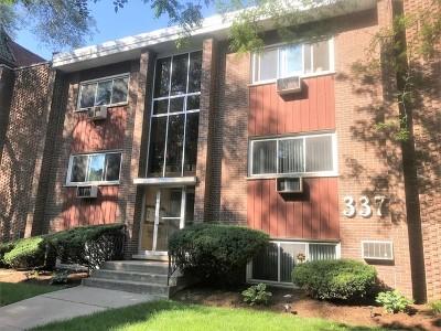 Oak Park Condo/Townhouse For Sale: 337 South Maple Avenue #21