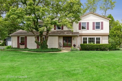 Prospect Heights Single Family Home For Sale: 400 Minnaqua Drive