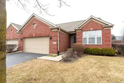 Orland Park Condo/Townhouse Contingent: 13318 Strandhill Drive