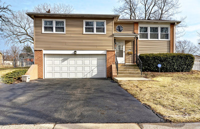 Woodridge Single Family Home For Sale: 7713 Dalewood Parkway