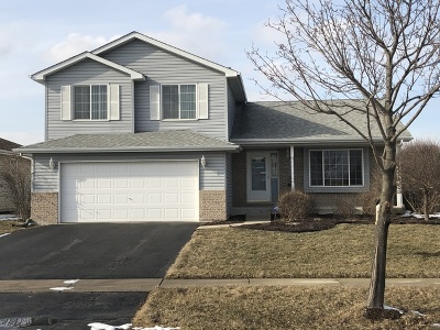 Joliet Single Family Home For Sale: 6901 Cornwall Drive