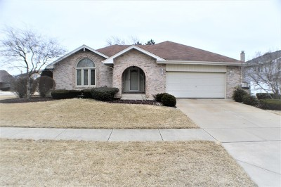 Orland Park Single Family Home For Sale: 17427 Harvest Hill Drive