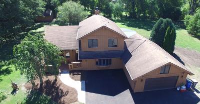 Warrenville Single Family Home For Sale: 29w641 Butterfield Road