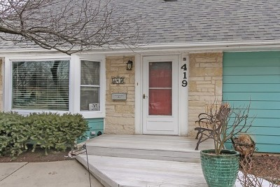 Mount Prospect Single Family Home For Sale: 419 North Russel Street