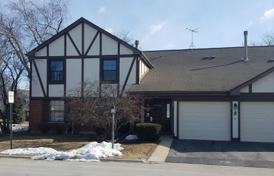 Schaumburg Condo/Townhouse For Sale: 369 Ferndale Court #B2