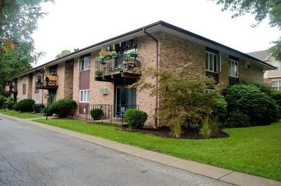 Glen Ellyn Condo/Townhouse For Sale: 505 Kenilworth Avenue #2