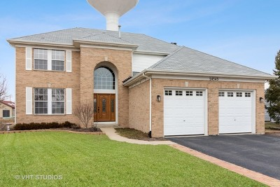 Plainfield Single Family Home For Sale: 24343 Apple Tree Lane