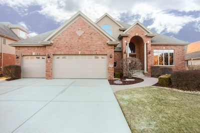 Orland Park Single Family Home For Sale: 17138 Deer Creek Drive