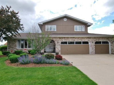 Mokena Single Family Home For Sale: 18716 Dickens Drive