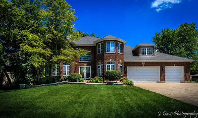 Roselle Single Family Home For Sale: 325 Williams Street