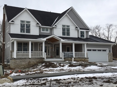 Downers Grove Single Family Home For Sale: 6040 Margo Court