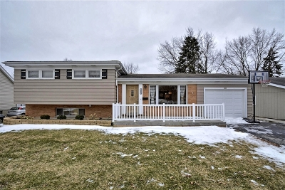 Roselle Single Family Home For Sale: 215 East Woodworth Place