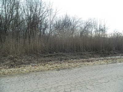 Kankakee Residential Lots & Land For Sale: 350 South 5000 W Road