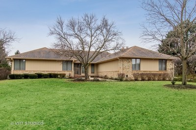 Single Family Home New: 1459 Thor Drive