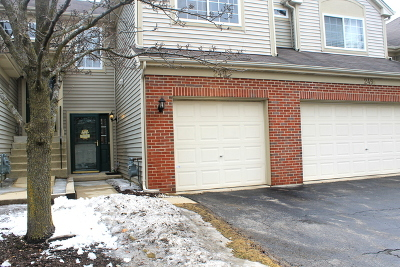 South Elgin Condo/Townhouse For Sale: 249 Nicole Drive #C