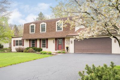Naperville Single Family Home New: 28w495 Douglas Road