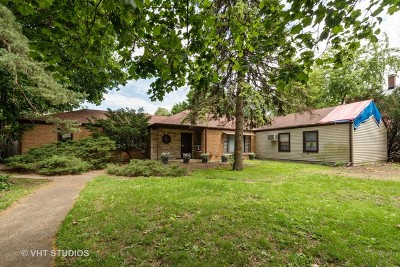 Naperville Single Family Home For Sale: 822 North Washington Street