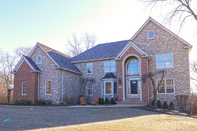 Barrington Single Family Home For Sale: 26480 Southgate Trail