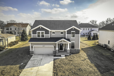 Plainfield Single Family Home For Sale: 12209 Red Clover Lane