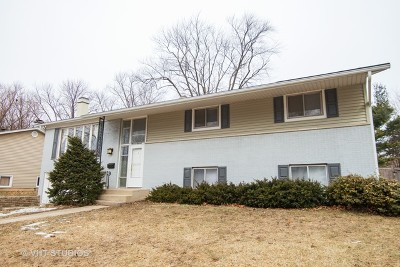 Palatine Single Family Home For Sale: 1100 East Fosket Drive