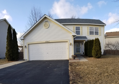 Romeoville Single Family Home For Sale: 1716 William Drive