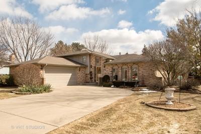 New Lenox Single Family Home For Sale: 804 Grumman Court