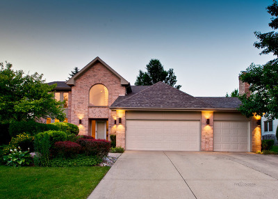 Buffalo Grove Single Family Home For Sale: 1990 Sheridan Road
