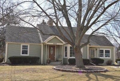 Wheaton Single Family Home For Sale: 404 Pershing Avenue