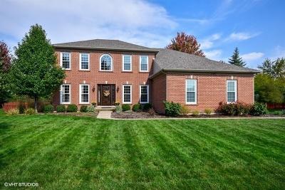 Batavia Single Family Home For Sale: 1169 Wind Energy Pass