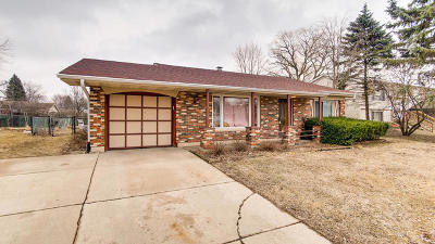 Bolingbrook Single Family Home For Sale: 164 North Schmidt Road