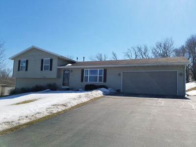Ogle County Single Family Home For Sale: 3941 East Whippoorwill Lane