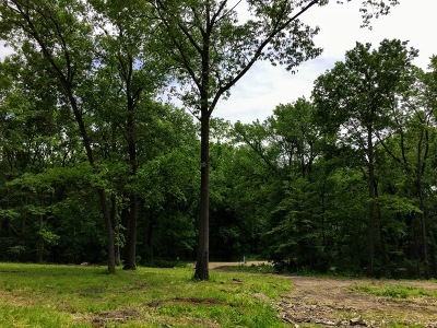 Kane County Residential Lots & Land For Sale: 33w596 Hub Road