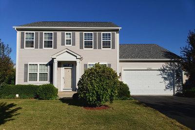 Plainfield Single Family Home New: 13901 Trillium Lane