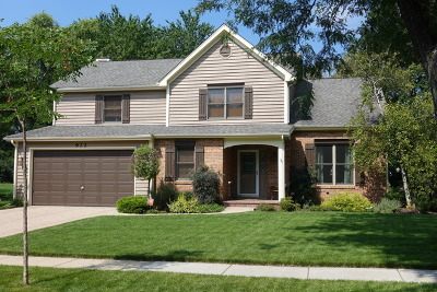 Palatine Single Family Home Contingent: 922 East Krista Court