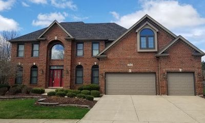 Naperville Single Family Home For Sale: 3927 Littlestone Circle