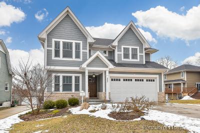 Glen Ellyn Single Family Home For Sale: 387 Anthony Street