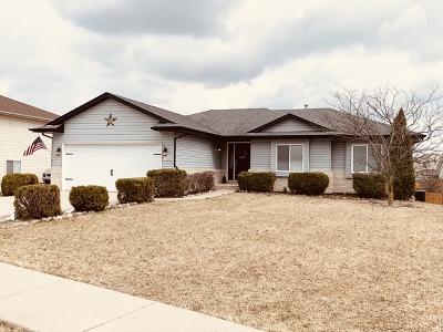 Joliet Single Family Home For Sale: 1310 Bassett Drive