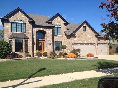 Mokena Single Family Home For Sale: 19816 Golden Oak Lane