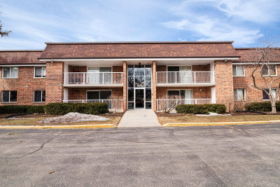Schaumburg Condo/Townhouse For Sale: 1102 Westover Lane #1B