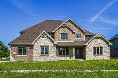 Frankfort Single Family Home For Sale: 22119 Mary Drive