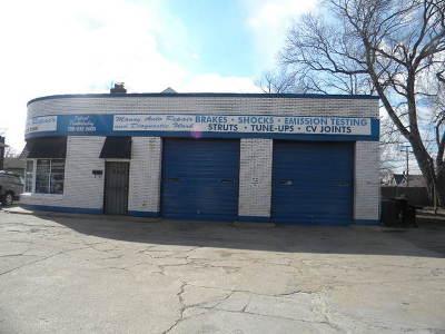 Calumet City IL Commercial For Sale: $219,000