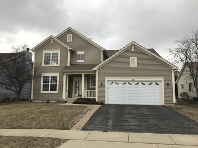 South Elgin Single Family Home For Sale: 524 North Thorndale Lane