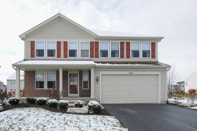 Elburn Single Family Home For Sale: 1152 President Street